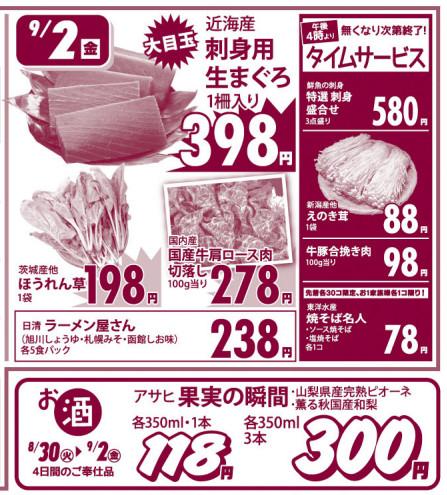 Flyer20160830a_02