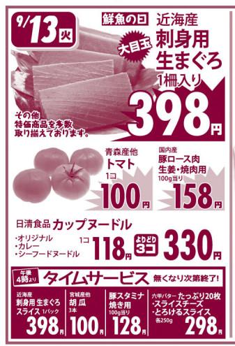 Flyer20160913a_13