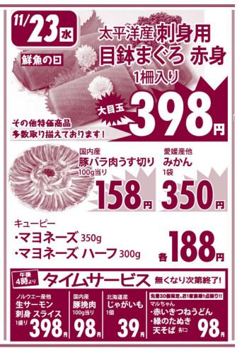 Flyer20161122a_23